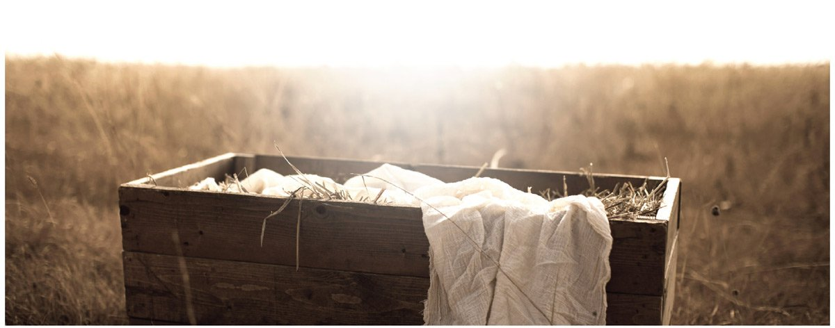 Christmas Greetings from Alistair Begg