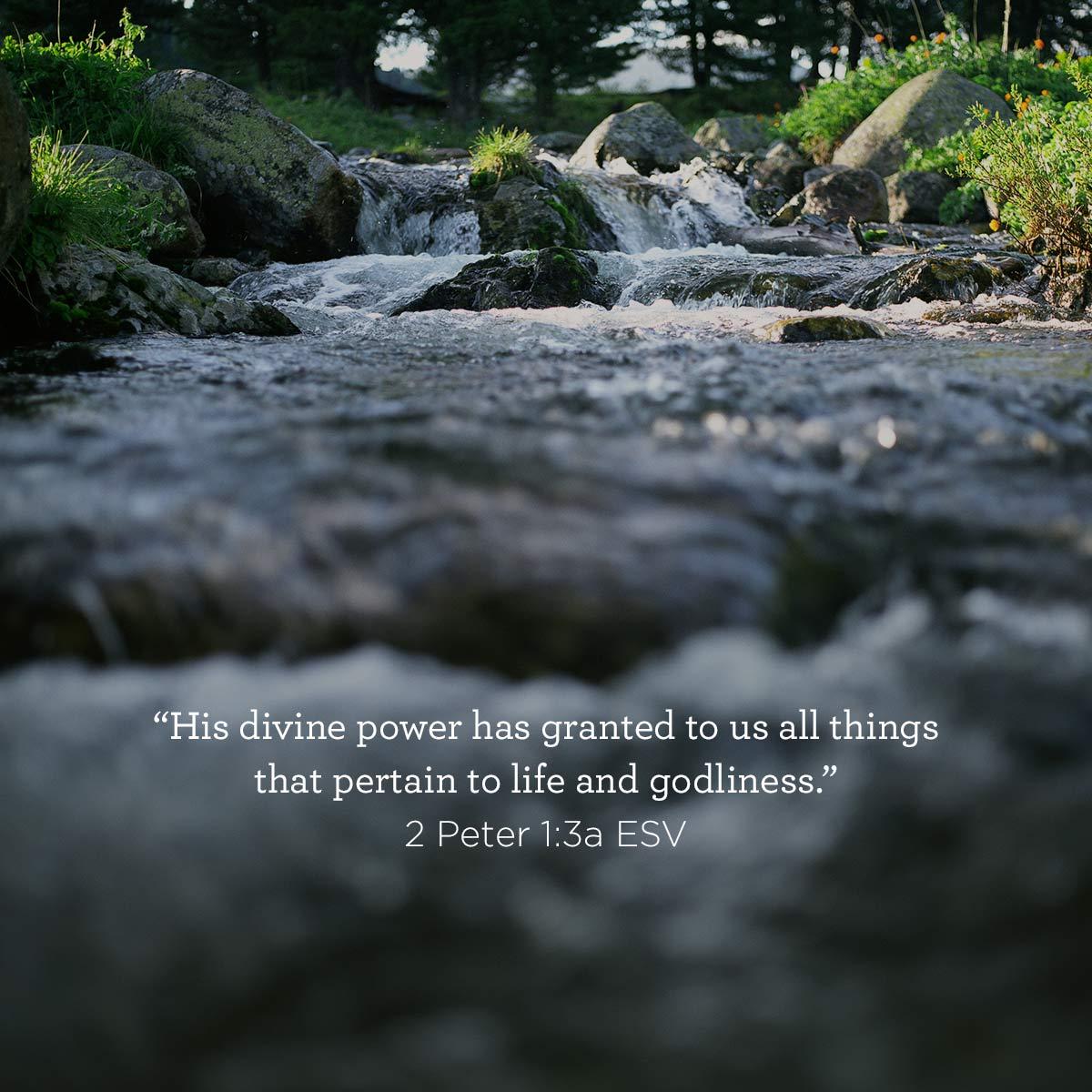 02_25_scripture.jpg