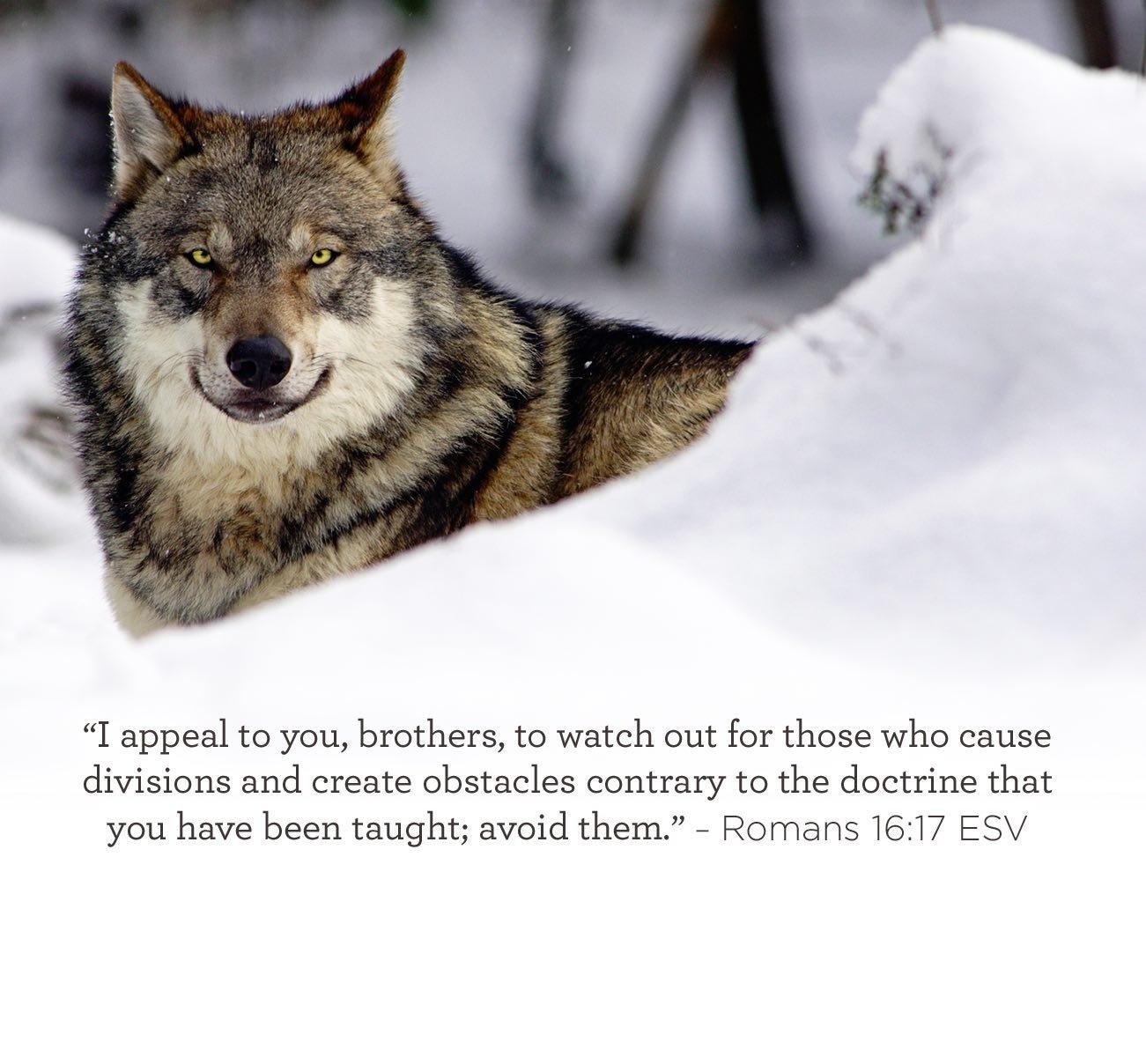 09-29-scripture.jpg