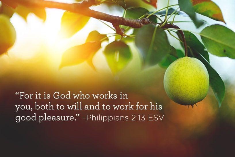 12-12b-scripture.jpg