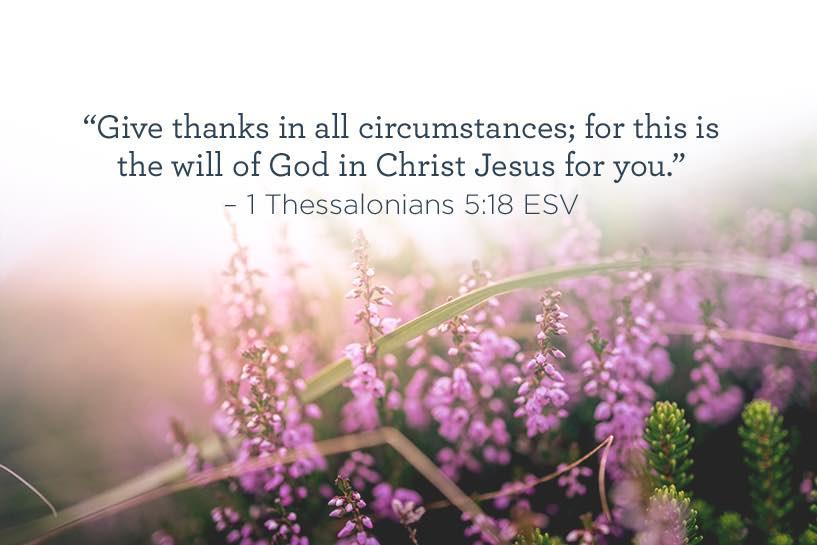 12-13-scripture.jpg