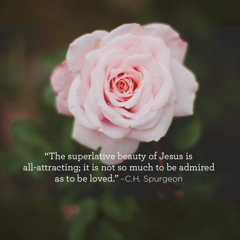 Superlative Beauty Of Christ