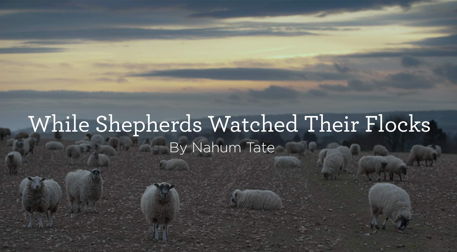 While Shepherds Watch Their Flocks