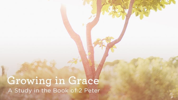 Growing in Grace