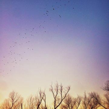 Download 5 Sermons on Forgiveness