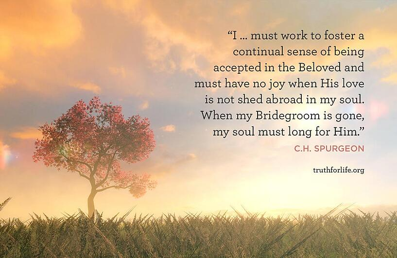 I … must work to foster a continual sense of being accepted in the Beloved and must have no joy when His love is not shed abroad in my soul. When my Bridegroom is gone, my soul must long for Him. - C.H. Spurgeon