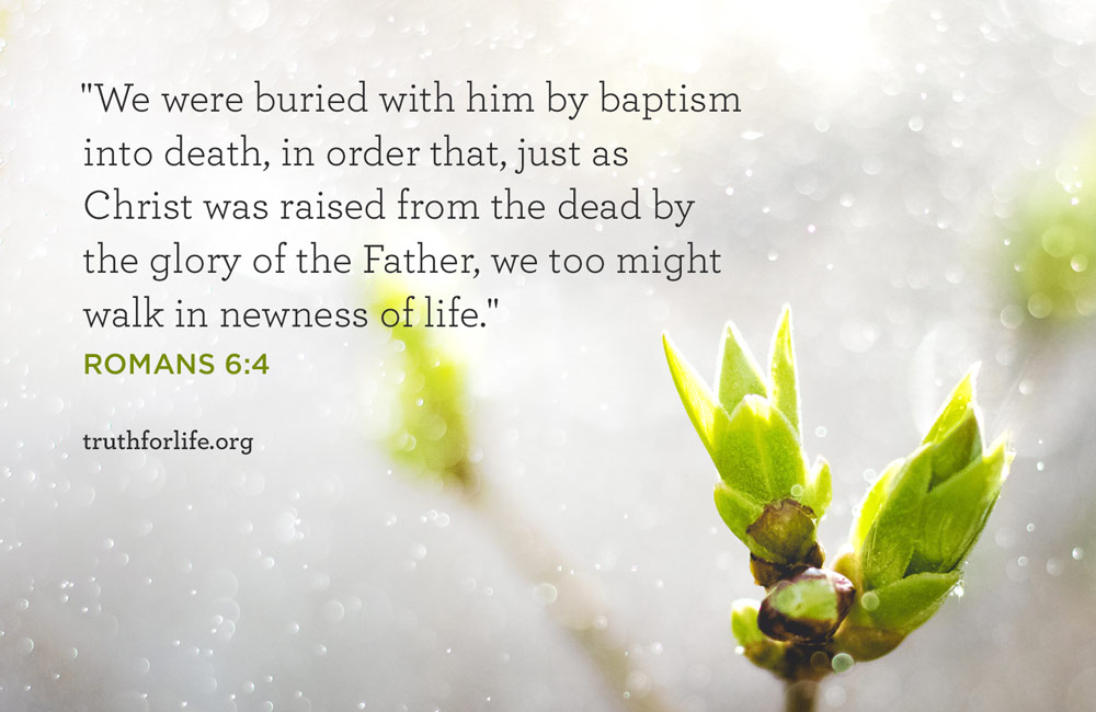 We were buried with him by baptism into death, in order that, just as Christ was raised from the dead by the glory of the Father, we too might walk in newness of life. - Romans 6:4