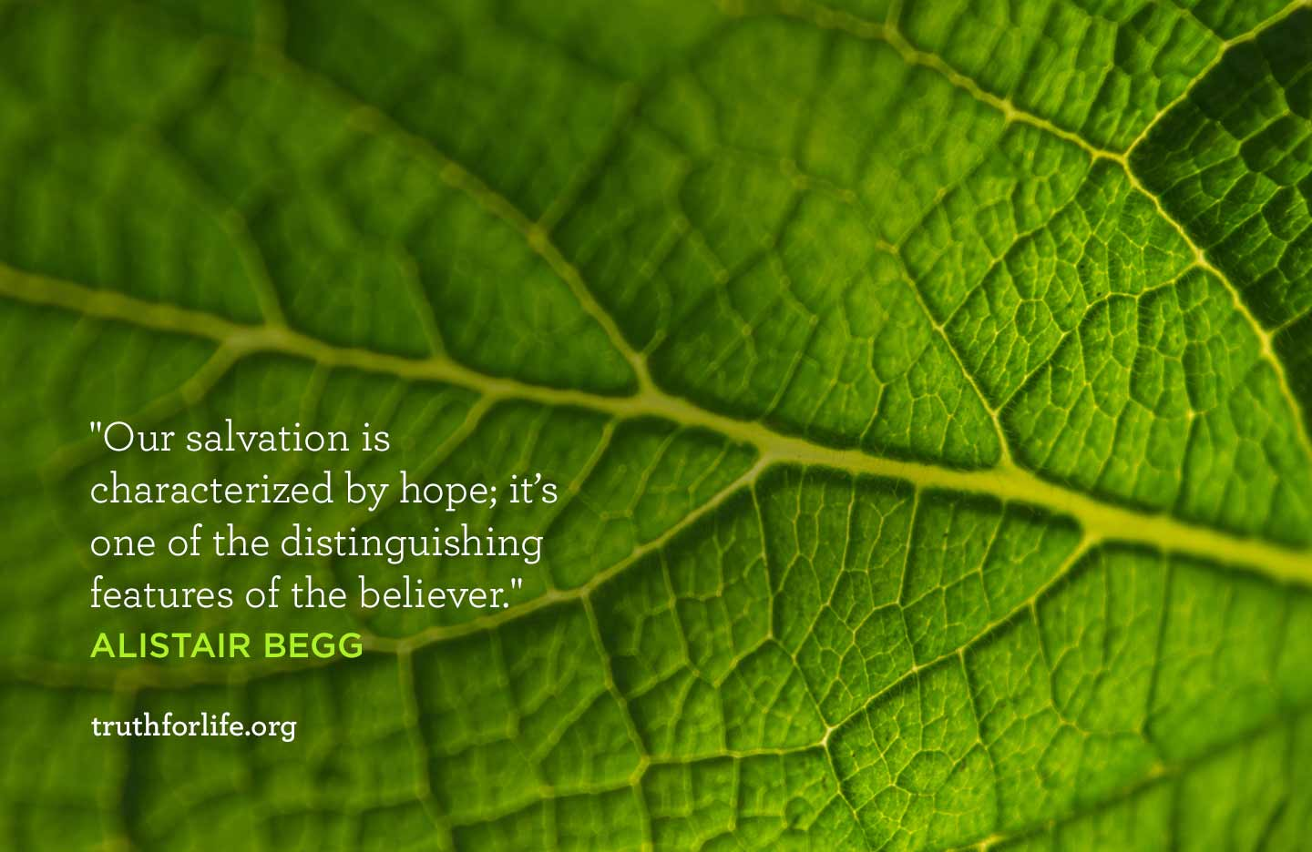 Our salvation is characterized by hope; it's one of the distinguishing features of the believer