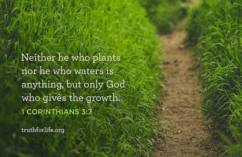 Neither he who plants nor he who waters is anything, but only God who gives the growth.  - 1 Corinthians 3:7