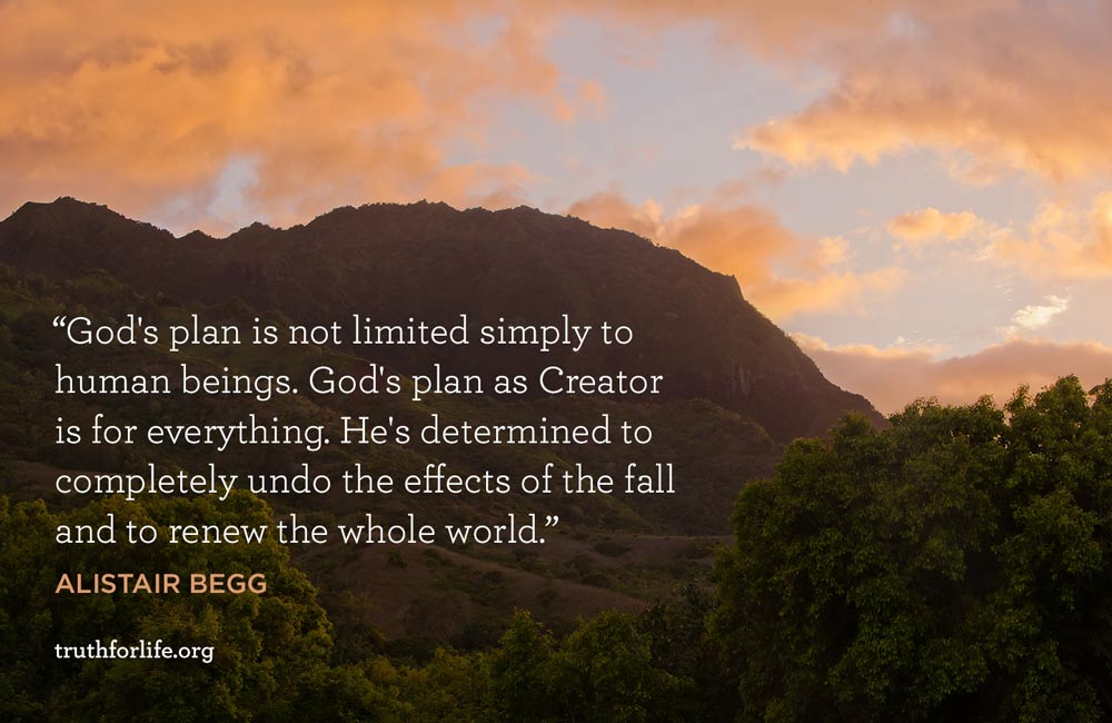 God's plan is not limited simply to human beings. God's plan as Creator is for everything. He's determined to completely undo the effects of the fall and to renew the whole world. - Alistair Begg