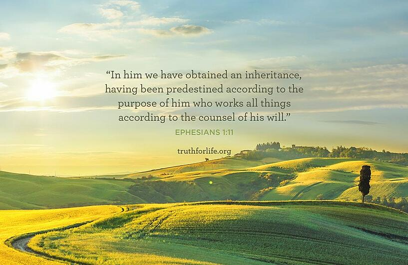 In him we have obtained an inheritance, having been predestined according to the purpose of him who works all things according to the counsel of his will. - Ephesians 1:11