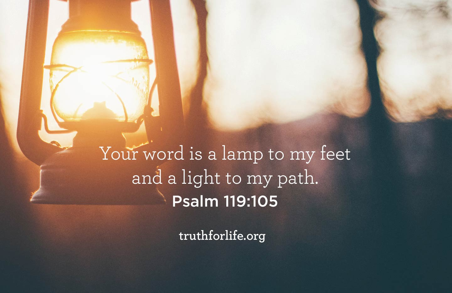 Your word is a lamp to my feet and a light to my path. - Psalm 119:105