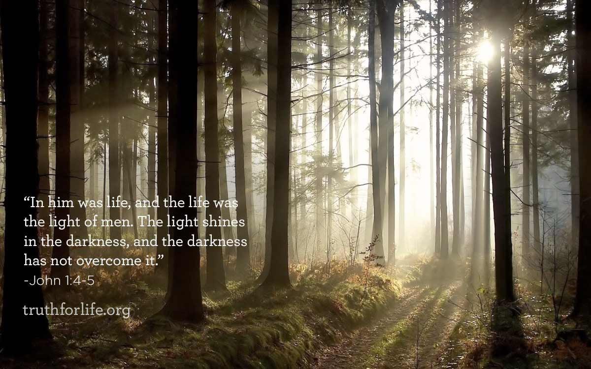 LightShines_BlogPost.jpg
