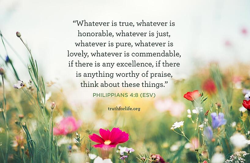 Whatever is true, whatever is honorable, whatever is just, whatever is pure, whatever is lovely, whatever is commendable, if there is any excellence, if there is anything worthy of praise, think about these things. - Philippians 4:8 (ESV)