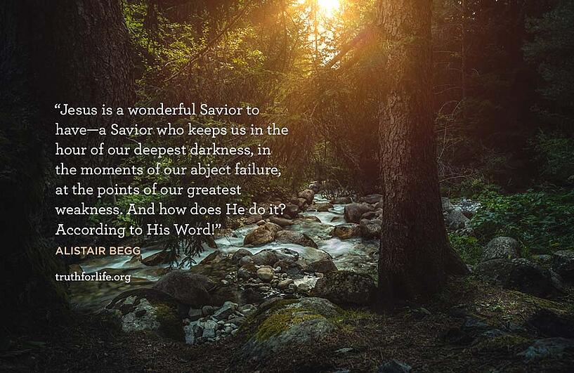 Jesus is a wonderful Savior to have—a Savior who keeps us in the hour of our deepest darkness, in the moments of our abject failure, at the points of our greatest weakness. And how does He do it? According to His Word! - Alistair Begg