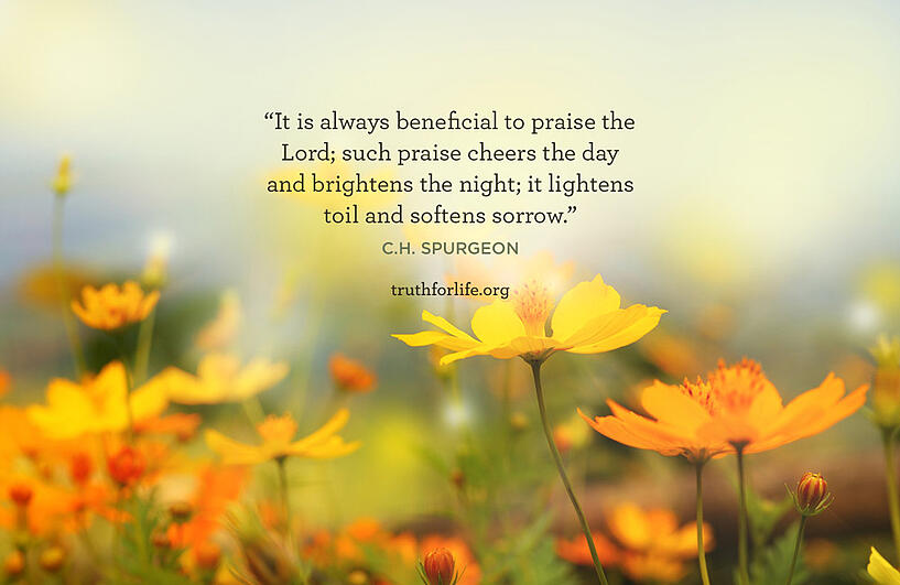 It is always beneficial to praise the Lord; such praise cheers the day and brightens the night; it lightens toil and softens sorrow. - C.H. Spurgeon
