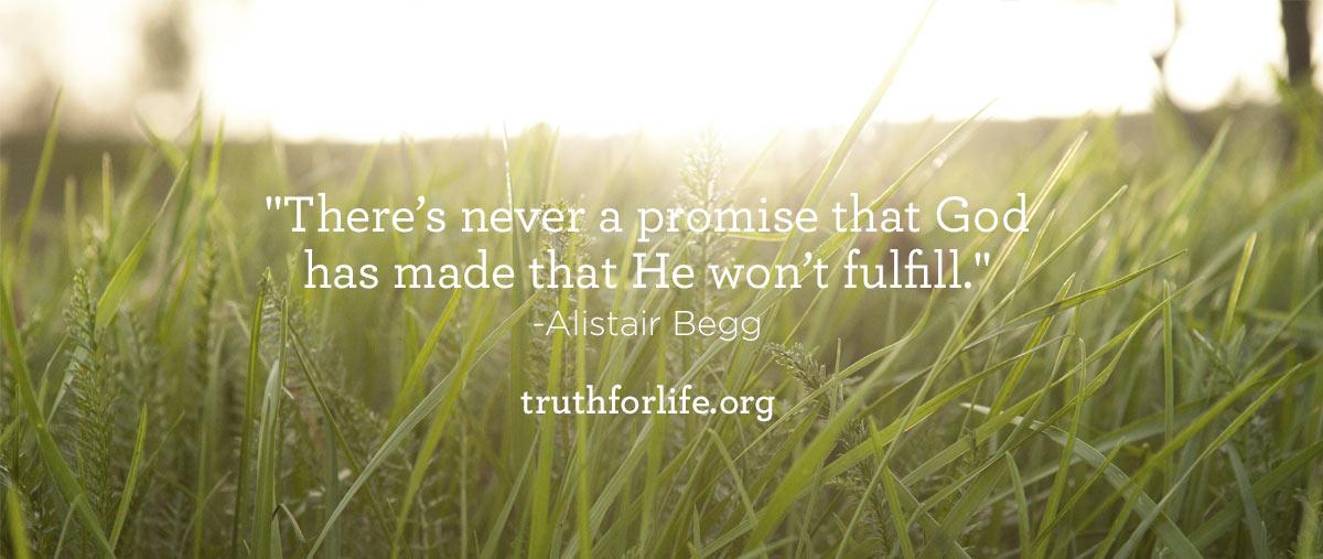 Promise_BlogPost.jpg