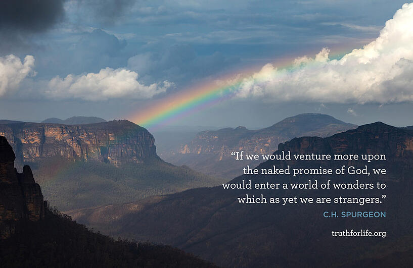 If we would venture more upon the naked promise of God, we would enter a world of wonders to which as yet we are strangers. - Charles Spurgeon