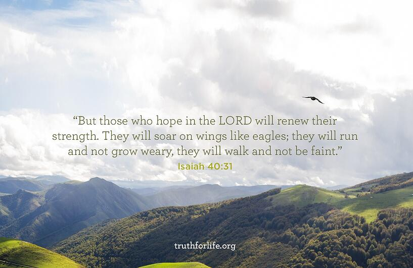 But those who hope in the LORD will renew their strength. They will soar on wings like eagles; they will run and not grow weary, they will walk and not be faint. - Isaiah 40:31