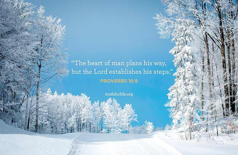 The heart of man plans his way,     but the Lord establishes his steps. - Proverbs 16:9