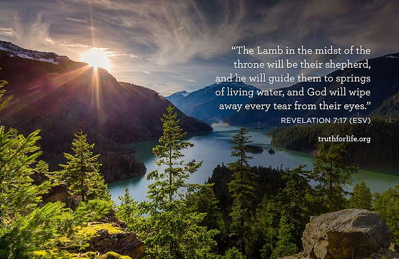 The Lamb in the midst of the throne will be their shepherd, and he will guide them to springs of living water, and God will wipe away every tear from their eyes. - Revelation 7:17