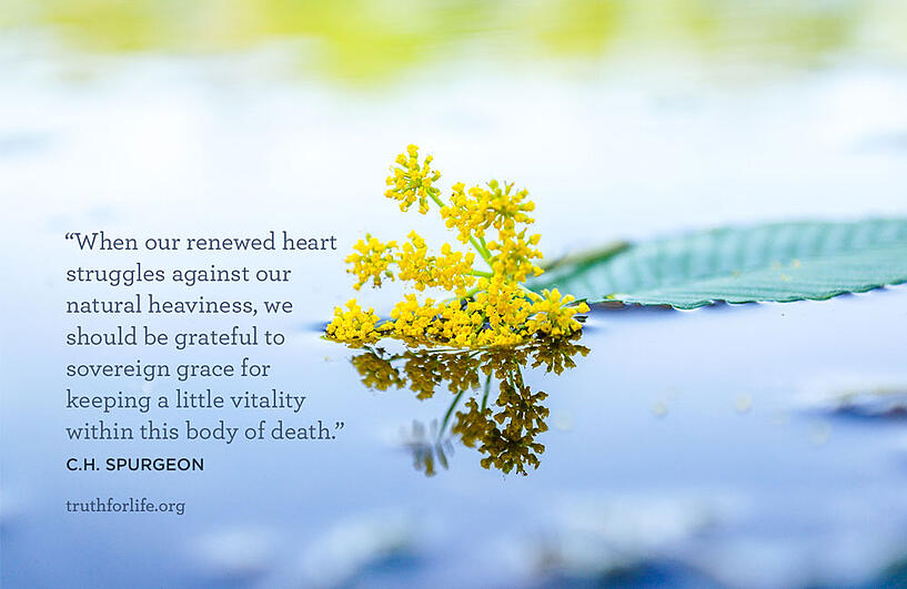 When our renewed heart struggles against our natural heaviness, we should be grateful to sovereign grace for keeping a little vitality within this body of death. - C.H. Spurgeon