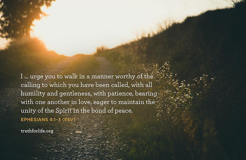 I … urge you to walk in a manner worthy of the calling to which you have been called, with all humility and gentleness, with patience, bearing with one another in love, eager to maintain the unity of the Spirit in the bond of peace. - Ephesians 4:1–3