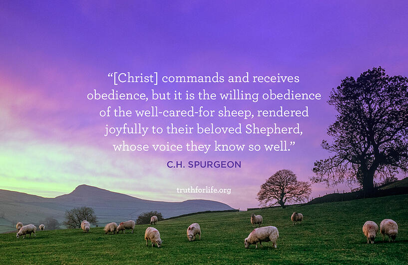 [Christ] commands and receives obedience, but it is the willing obedience of the well-cared-for sheep, rendered joyfully to their beloved Shepherd, whose voice they know so well. - C.H. Spurgeon