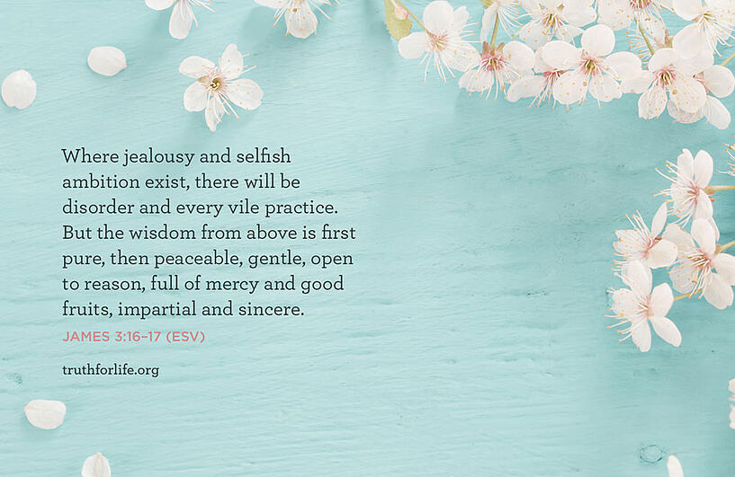 Where jealousy and selfish ambition exist, there will be disorder and every vile practice. But the wisdom from above is first pure, then peaceable, gentle, open to reason, full of mercy and good fruits, impartial and sincere. - James 3:16-17 ESV