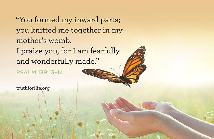 You formed my inward parts; you knitted me together in my mother's womb. I praise you, for I am fearfully and wonderfully made. - Psalm 139:13–14
