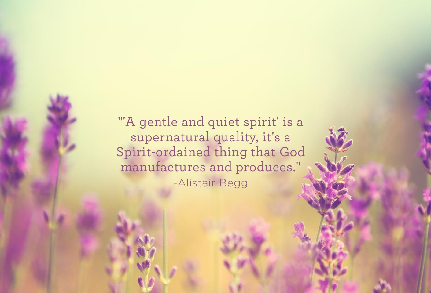 thumbnail image for A Gentle and Quiet Spirit