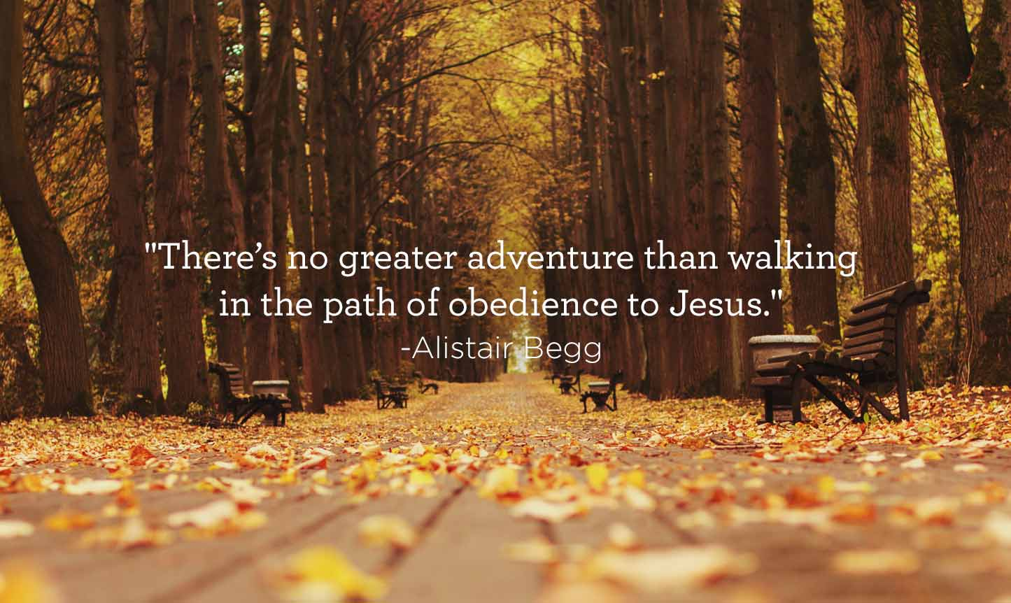 Oct142015_ABQuote