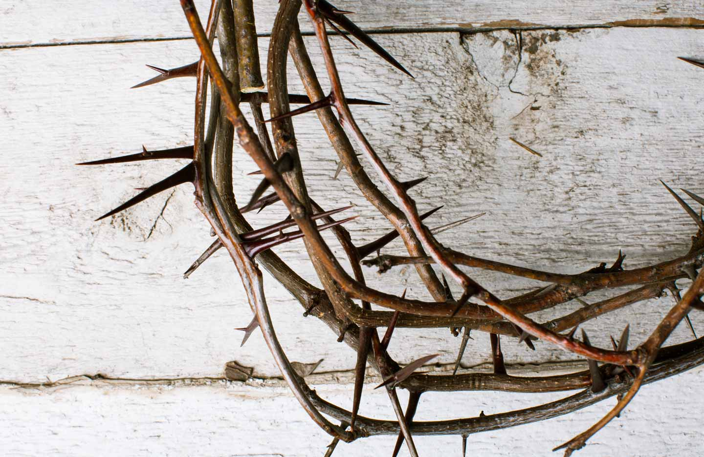 thumbnail image for Why Did Jesus Endure the Cross? (3 of 7)