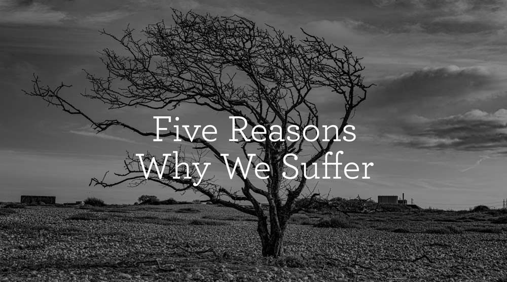 Five Reasons Why We Suffer