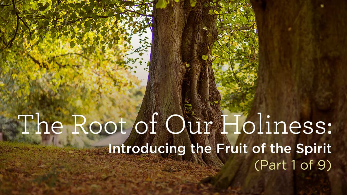 thumbnail image for The Root of Our Holiness: Introducing the Fruit of the Spirit (Part 1 of 9)