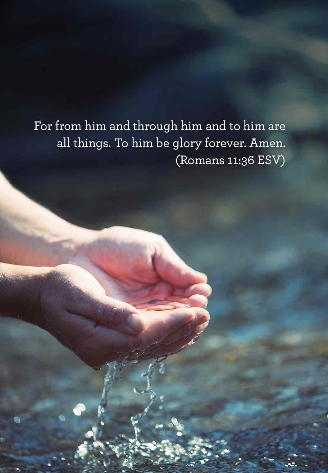 thumbnail image for From Him Through Him and To Him are All Things