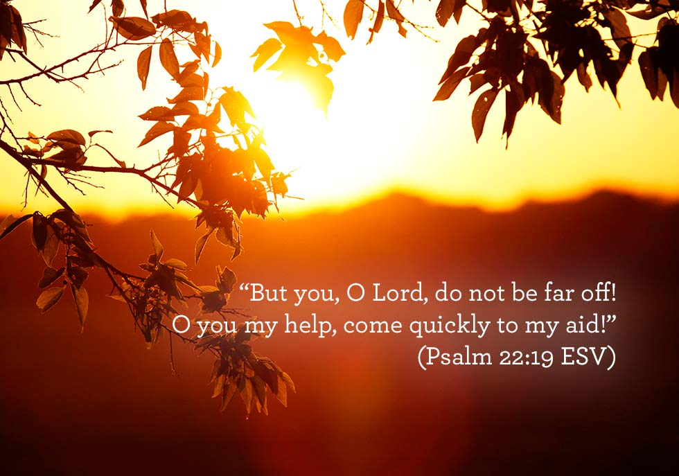 thumbnail image for But you, O Lord, do not be far off!