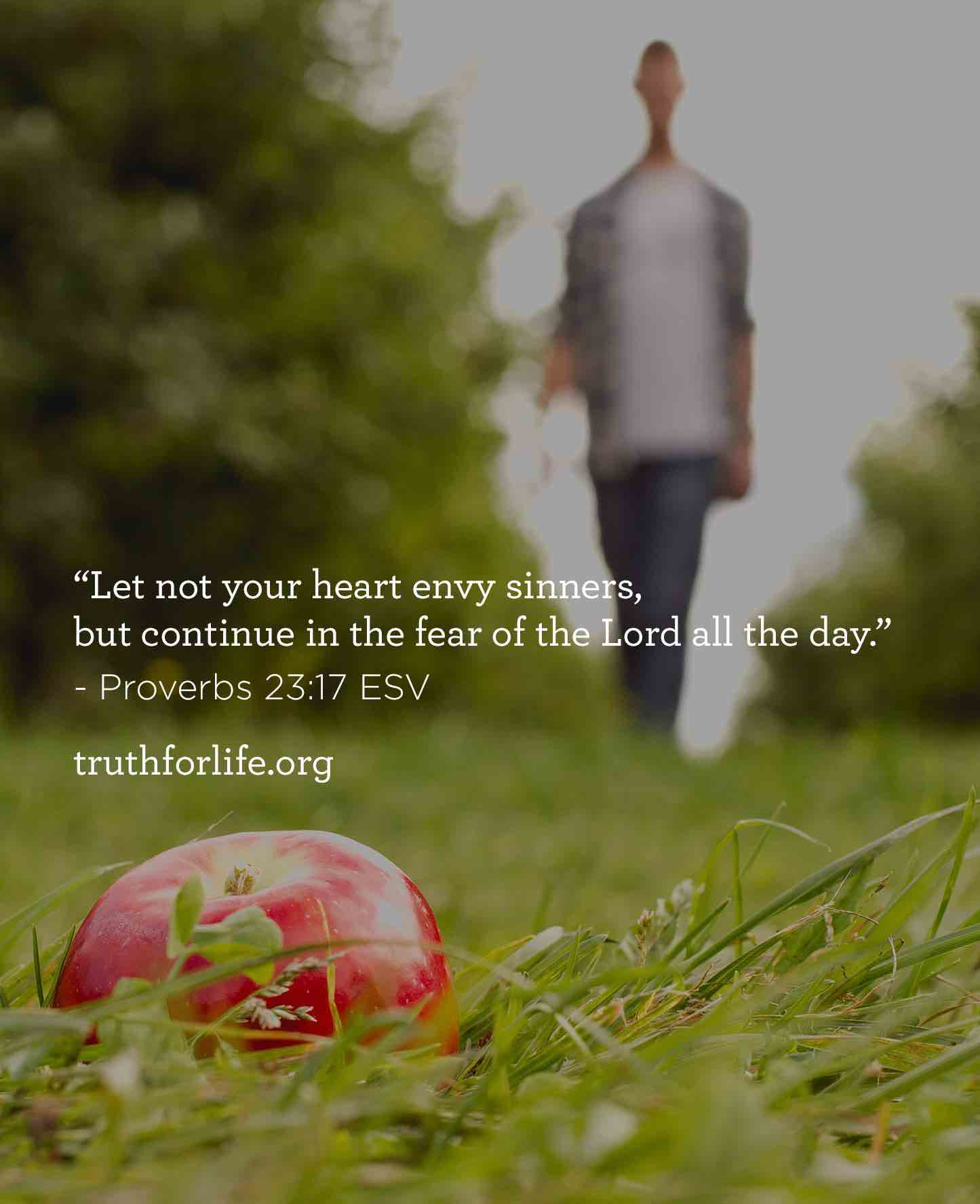 thumbnail image for Let not your heart envy sinners, but continue in the fear of the Lord