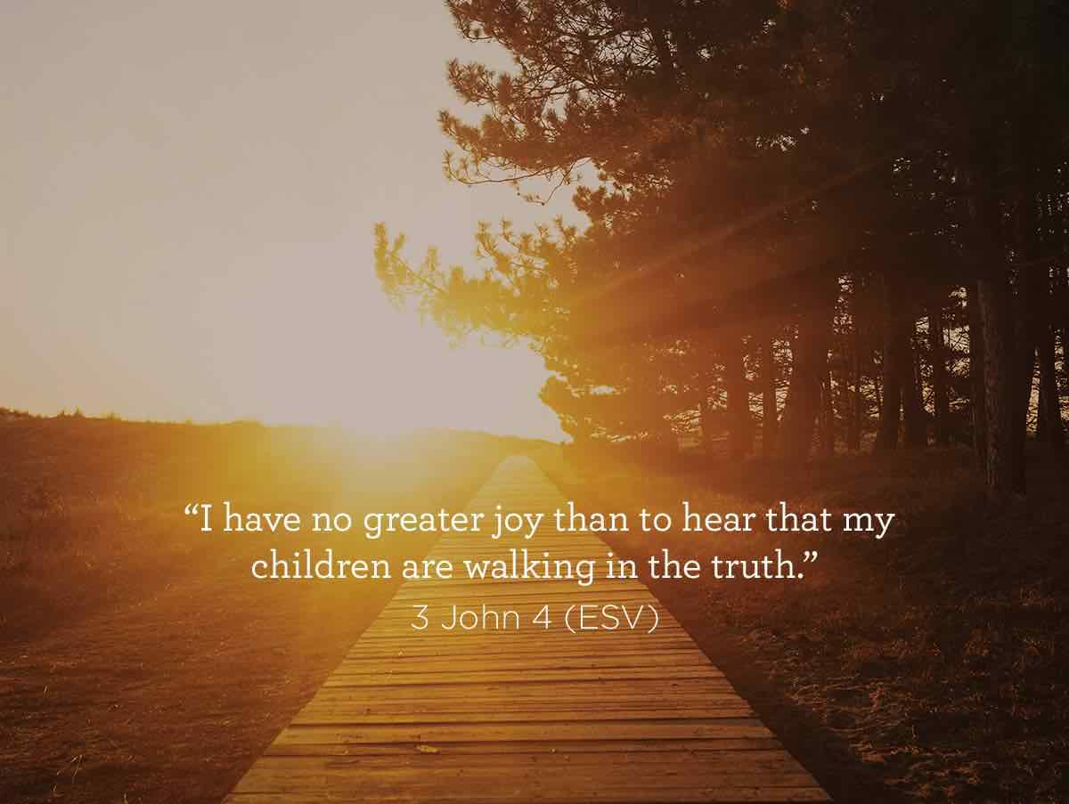 thumbnail image for I have no greater joy...