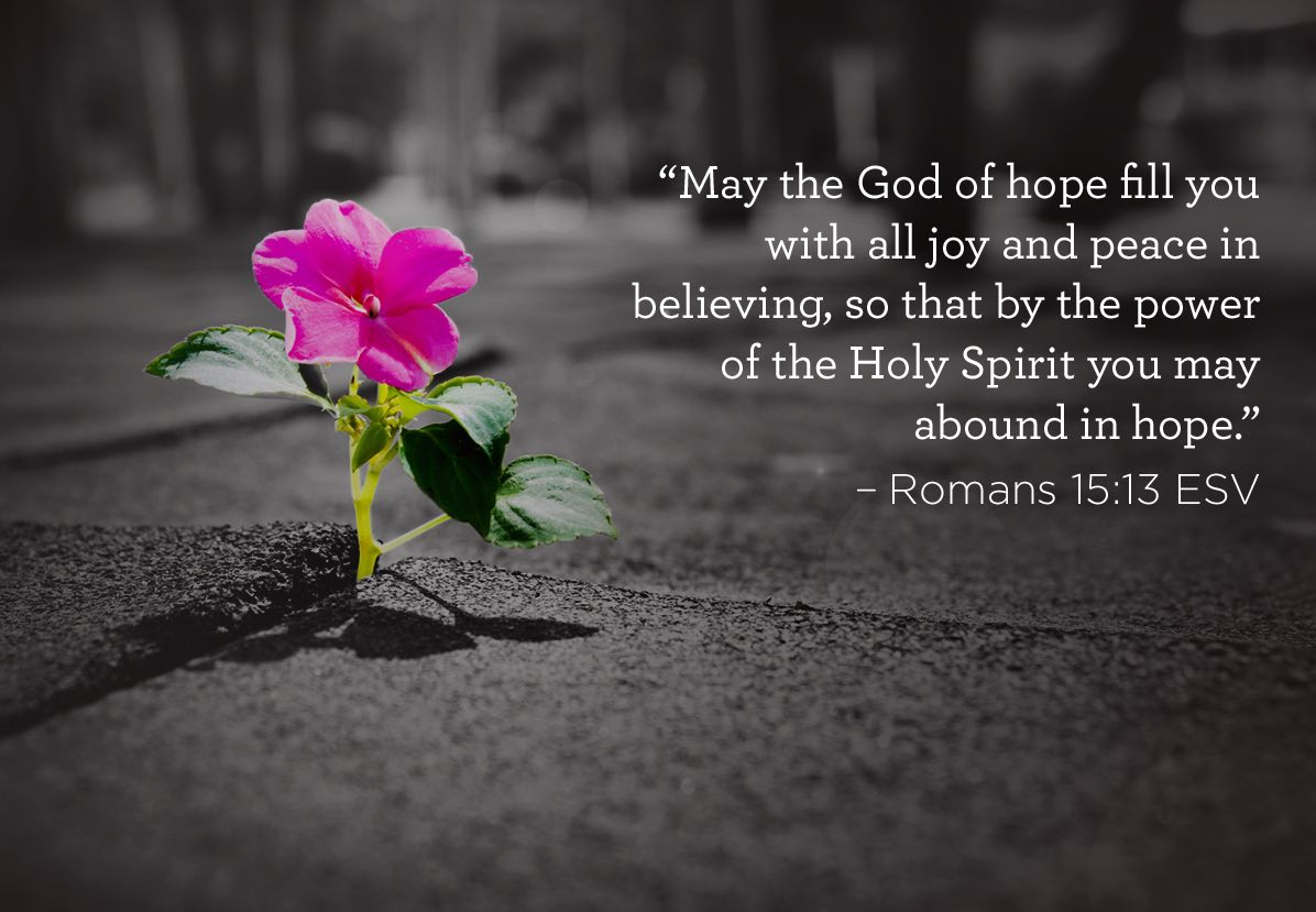thumbnail image for So that You May Abound In Hope