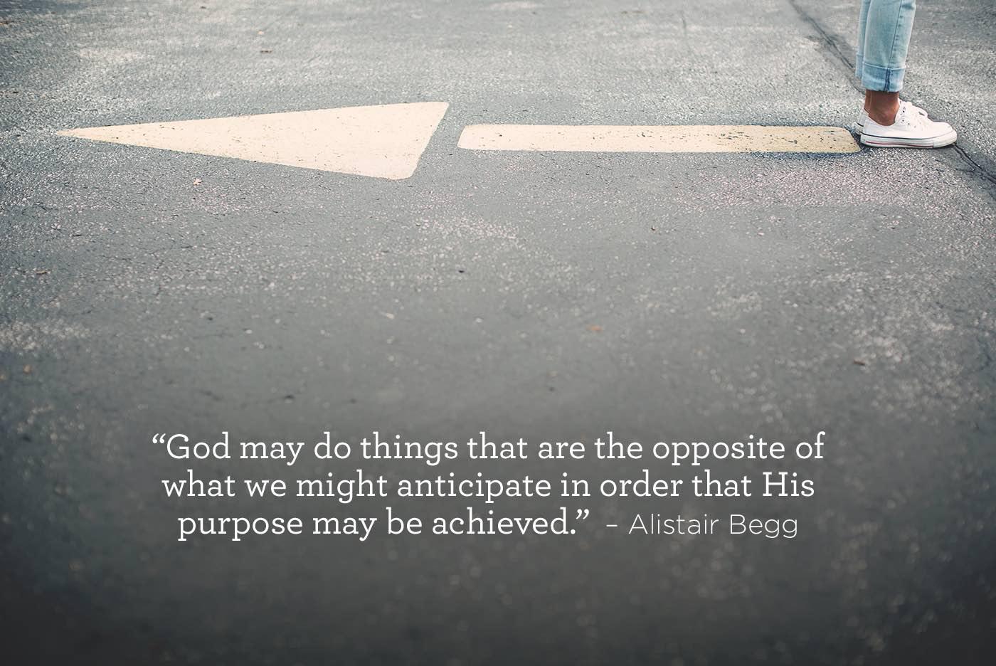 thumbnail image for God's Purpose