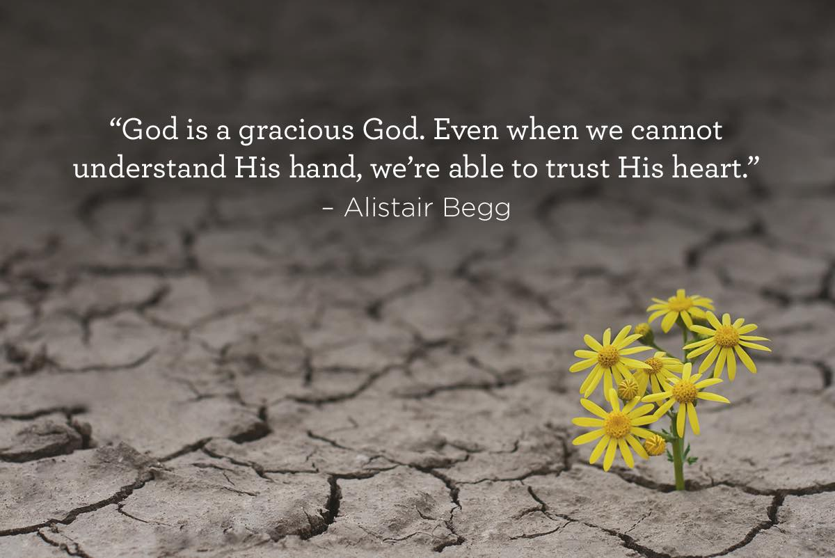 thumbnail image for Trust His Heart