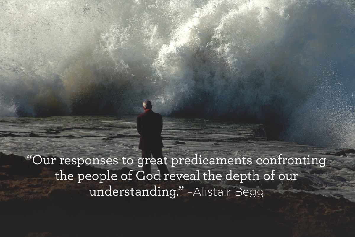thumbnail image for Response to Predicaments