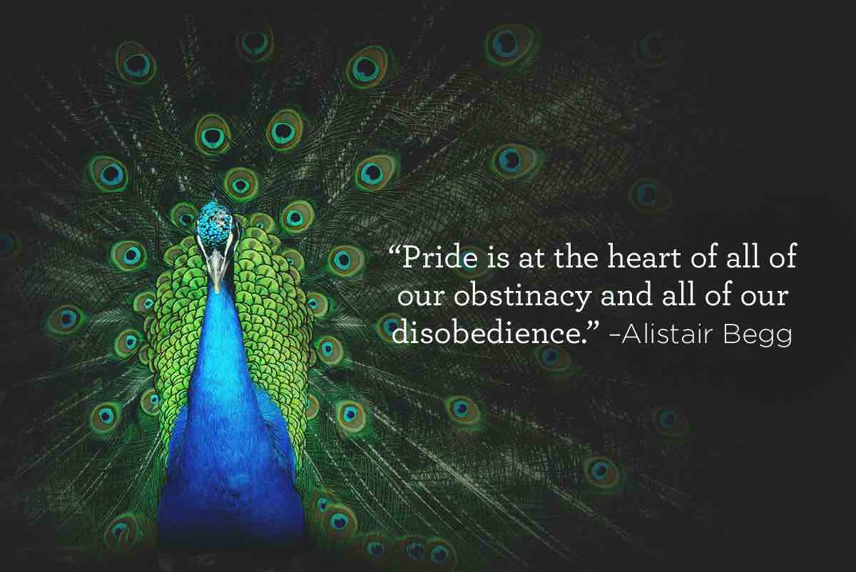 thumbnail image for Pride is at the Heart
