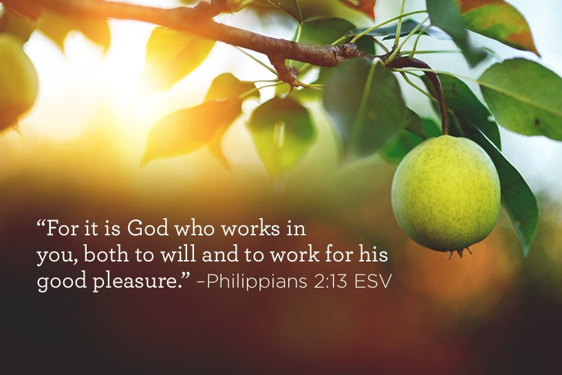 thumbnail image for It is God Who Works in You