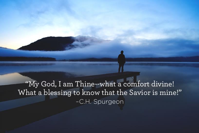 thumbnail image for Comfort Divine