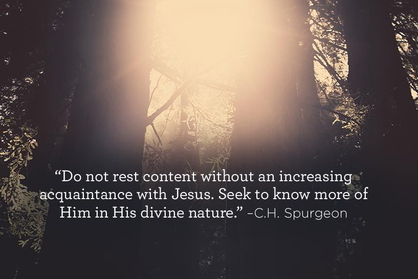 thumbnail image for His Divine Nature
