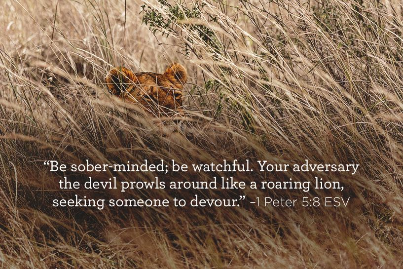 thumbnail image for Be Sober-minded