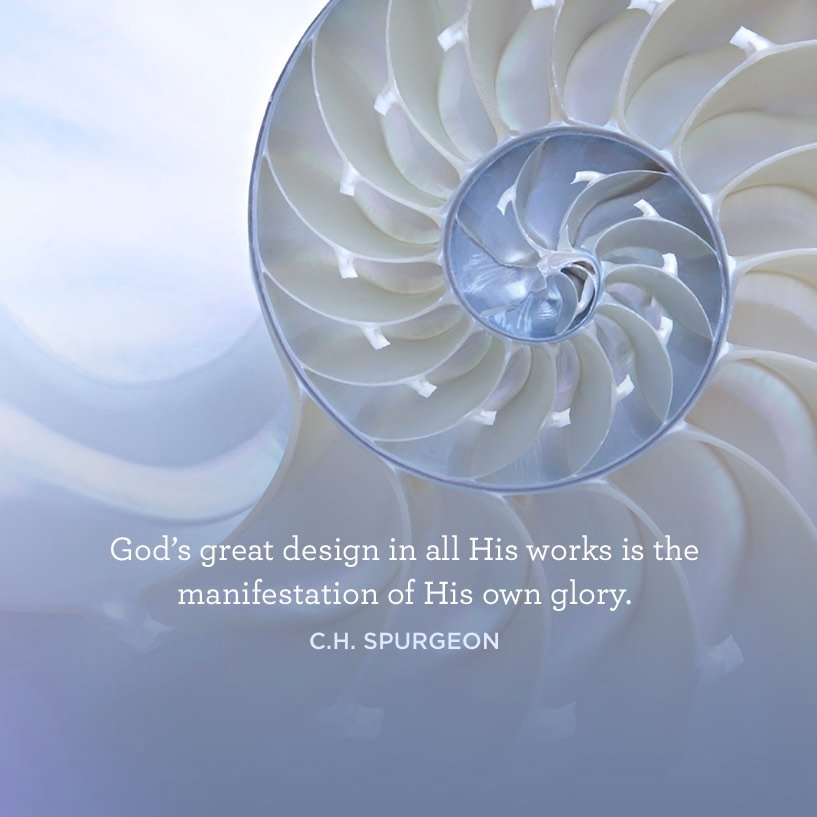 thumbnail image for God's Great Design