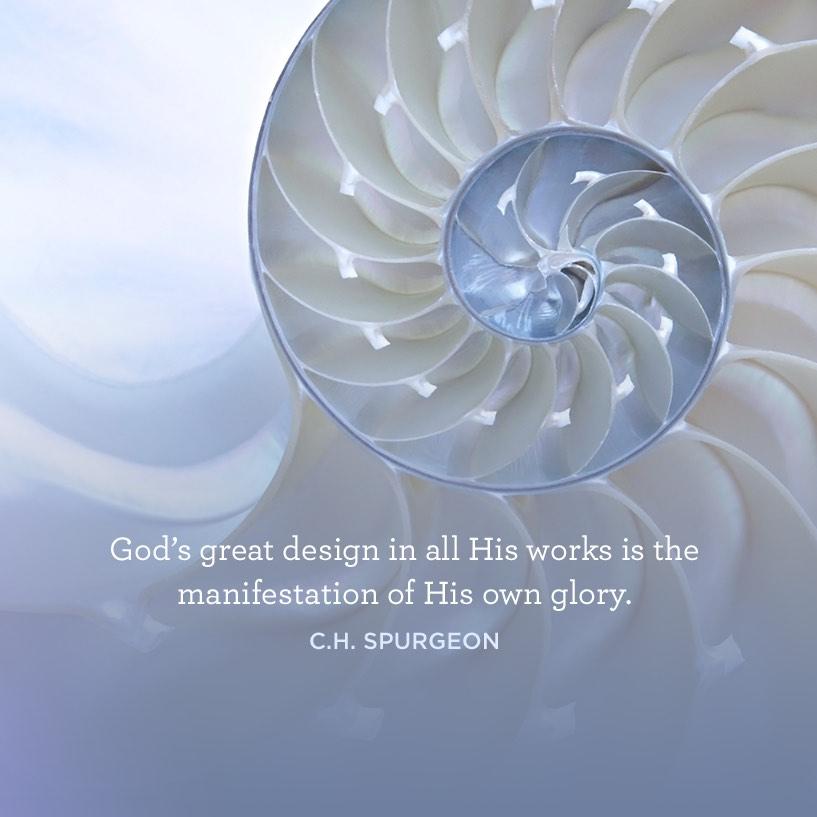 thumbnail image for God's Great Design
